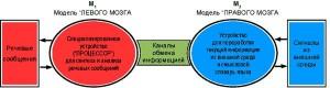 Рис. 12. Предлагаемая схема двухмашинного комплекса, моделирующего языковые функции двух полушарий