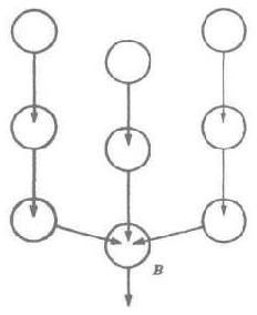 Рис. 6. Вариант водосборной системы. Цепочки (или протоки) следуют отдельно от главной цепи и присоединяются к ней лишь в самом конце