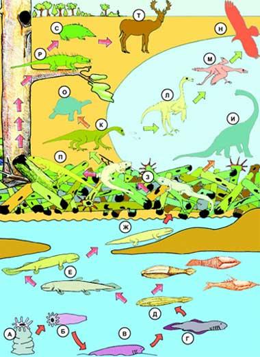 Важные эволюционные события, приводящие к смене среды обитания, требовали качественных изменений в нервной системе.