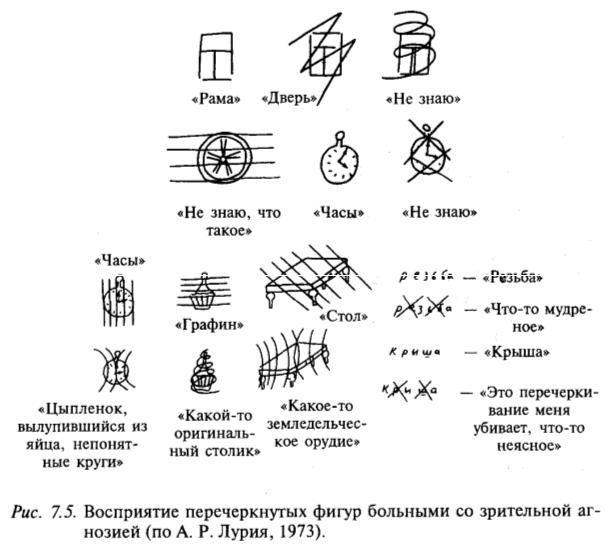 Восприятие перечеркнутых фигур больными со зрительной агнозией (по А.Р. Лурия, 1973)