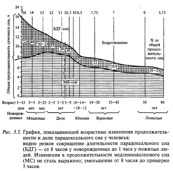 Возрастные изменения продолжительности и доли парадоксального сна у человека