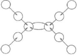 Рис. 13. В центре находятся две медузы в состоянии «объятия»