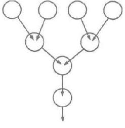 Рис. 8. Образование в виде дерева. Верхний ряд медуз напоминает крону дерева