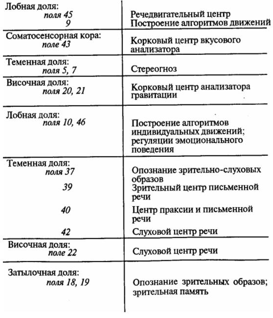 Цитоархитектонические поля коры больший полушарий (по К. Бродману). Описание полей 2