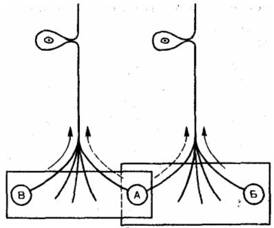 Схема зависимости различительной способности от перекрытия рецептивных полей